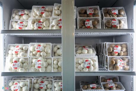 Nấm mỡ Yoshimoto là mặt hàng mới nhận được nhiều sự chú ý từ khách tham quan. Loại nấm có nguồn gốc từ châu Âu này được một công ty Nhật Bản trồng theo phương pháp organic tại Bảo Lộc (Lâm Đồng) có thể ăn sống. Giá một vỉ 200 gam được bán 80.000 đồng.