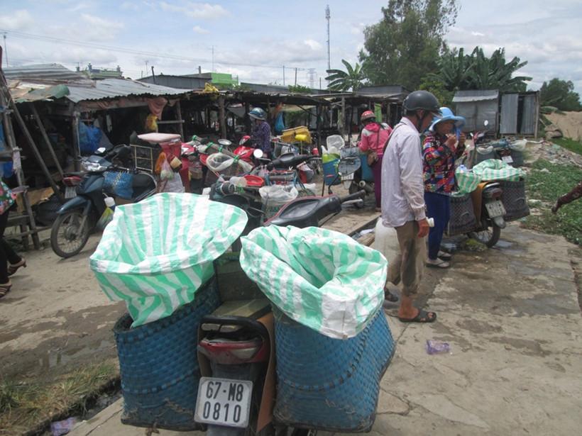 Xe máy của các lái cá đang đậu chờ thu mua   THANH DŨNG