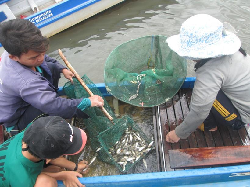 Vợ chồng ngư dân Hải xúc cá cân cho chủ vựa cá, lái cá