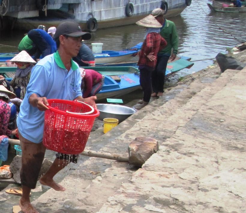 Một lái cá khi cân cá linh xong đã vội vàng khiêng giỏ cá đưa lên xe máy
