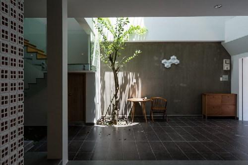 Từ phòng khách, gia chủ có thể ngắm khoảng sân với cây xanh và ánh nắng lung linh.