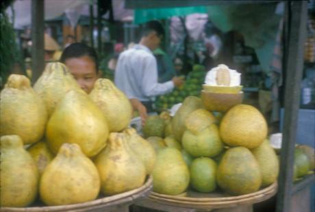 Những quả bưởi vàng ruộm, thơm lừng ở chợ Sài Gòn dịp Tết Trung thu 1966. Ảnh: Douglas Ross.