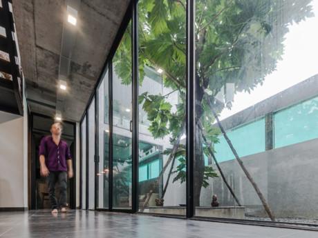 Cửa kính được sử dụng ở hầu hết mọi không gian trong nhà.