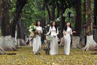 Ảnh dự thi Việt Nam - đất nước - con người của Nguyễn Đức Toàn