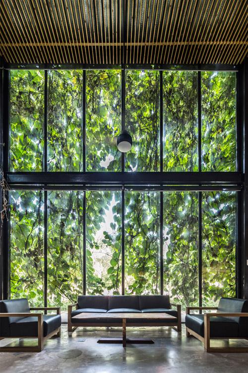 Góc tiếp khách trong nhà giống như nằm giữa một khu vườn xanh.