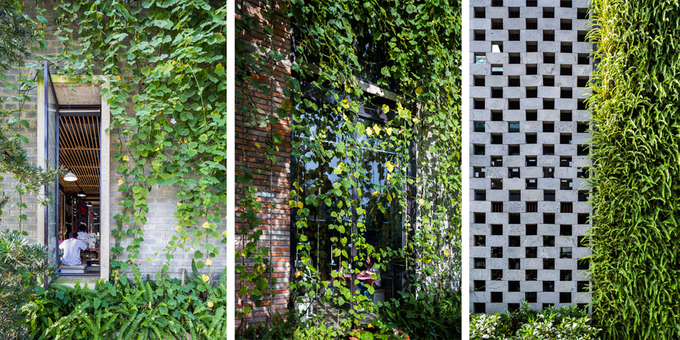 Sau 2 năm xây dựng, cây xanh phủ tòa nhà từ mặt trước ra hai bên tạo ra điểm nhấn màu xanh nổi bật. Nhờ vậy, người làm việc ở đây cũng có cảm giác thư thái, thoải mái hơn.