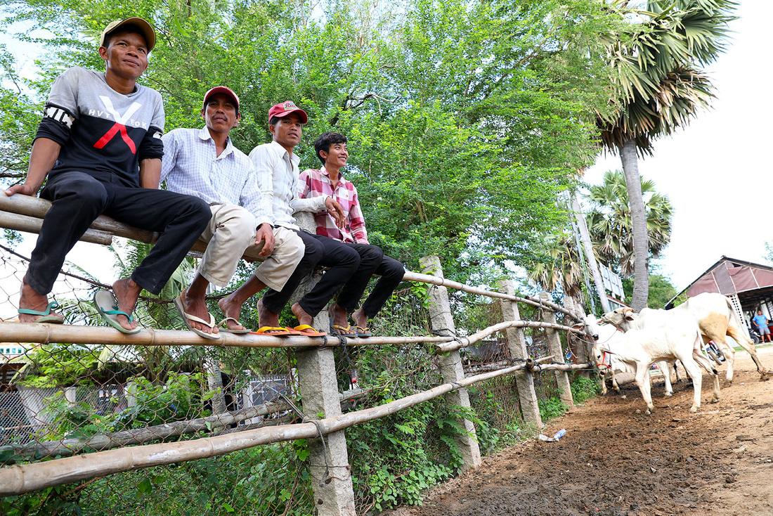 Người bán bò từ Campuchia ngồi chờ thương lái người Việt đến mua bò - Ảnh: HỮU KHOA