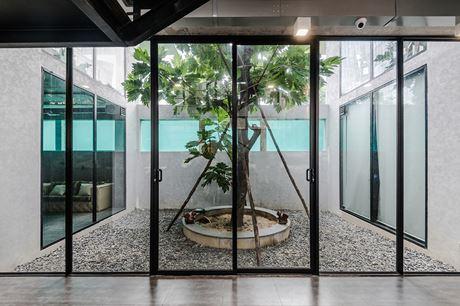 Căn nhà còn bố trí khu vực hầm làm phòng sinh hoạt chung. Tại đây kiến trúc sư bố trí nhiều khoảng không gian thông gió và trồng cây xanh để không gian trong nhà luôn thông thoáng, mát mẻ.