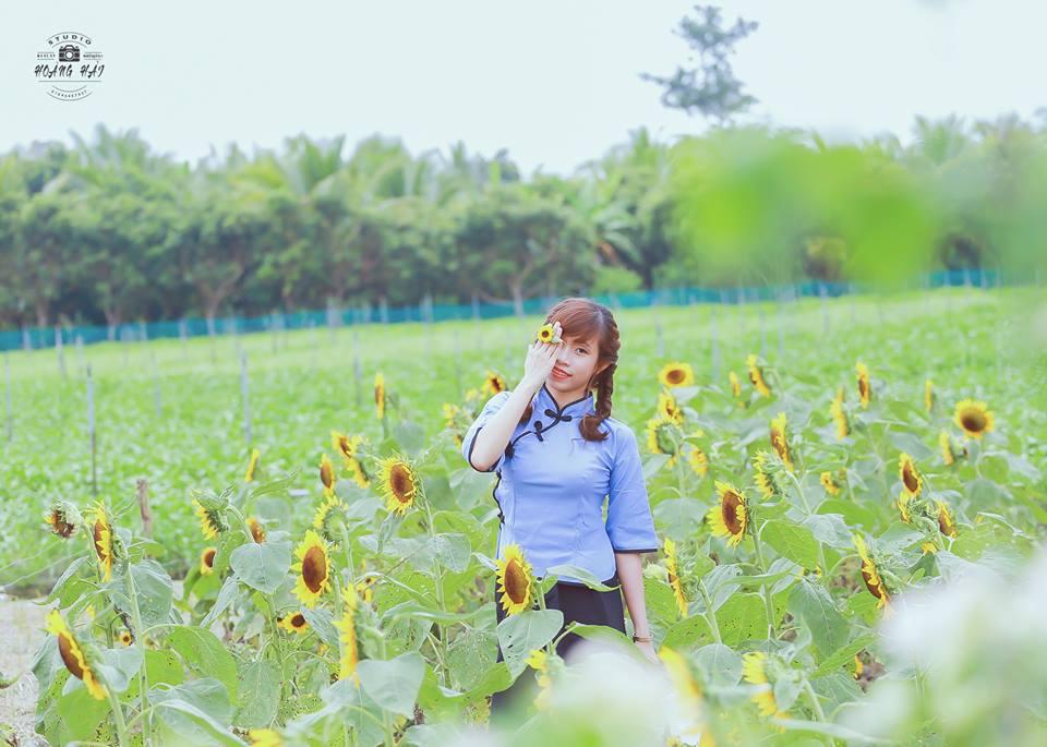 Trong Ao Sen Gò Me cũng có mùa có cánh đồng hoa dướng dương vàng rực dưới ánh nắng mặt trời. Để bộ hình thêm phần long lanh các bạn có thể thuê photographer để lưu giữ lại những khoảnh khắc tươi đẹp nha. Ảnh FB Chụp ảnh ngoại cảnh Long An