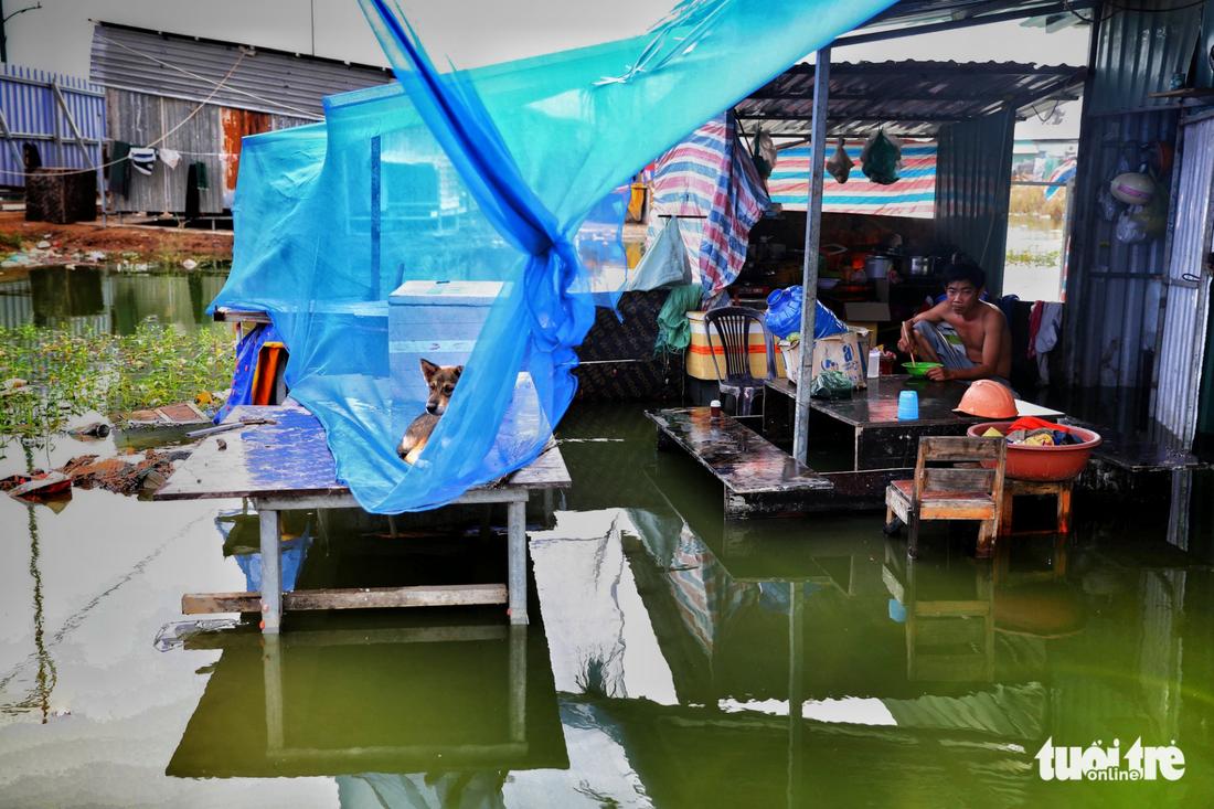 Một lán trại mênh mông nước sau cơn mưa đêm - Ảnh: HỮU KHOA