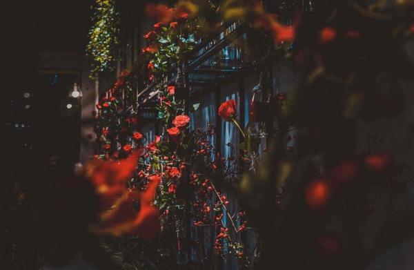 Không gian rất lý tưởng để hẹn hò hay để cầu hôn (Nguồn: 38 Flower Market Tea House)