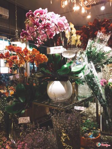 Không gian tràn ngập hoa tươi (Nguồn: Foody)