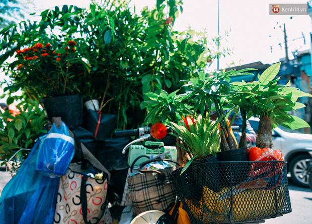 Những chiếc giỏ xe chở đầy cây cảnh, họ đã chở mùa hè đi khắp nẻo đường Sài Gòn như thế.