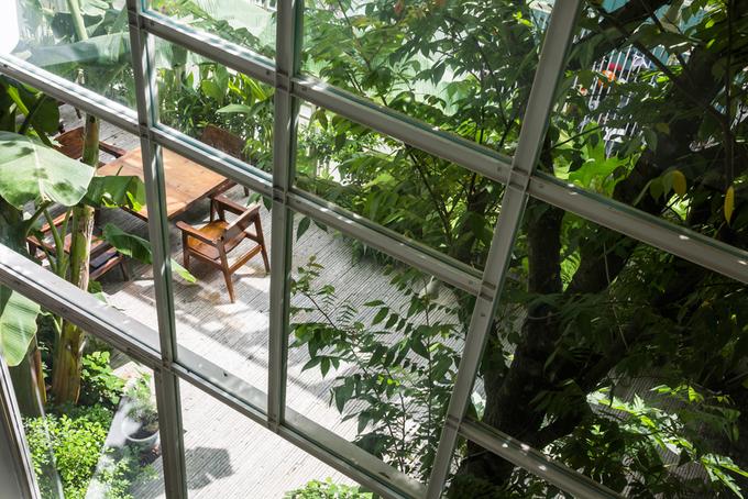 Trong nhà chỉ có màu trắng, nâu gỗ và sắc xanh của cây nhưng không bị nhàm chán bởi có bóng nắng lung linh, cành lá rung nhẹ trong gió hay tiếng chim hót ríu rít sớm mai.
