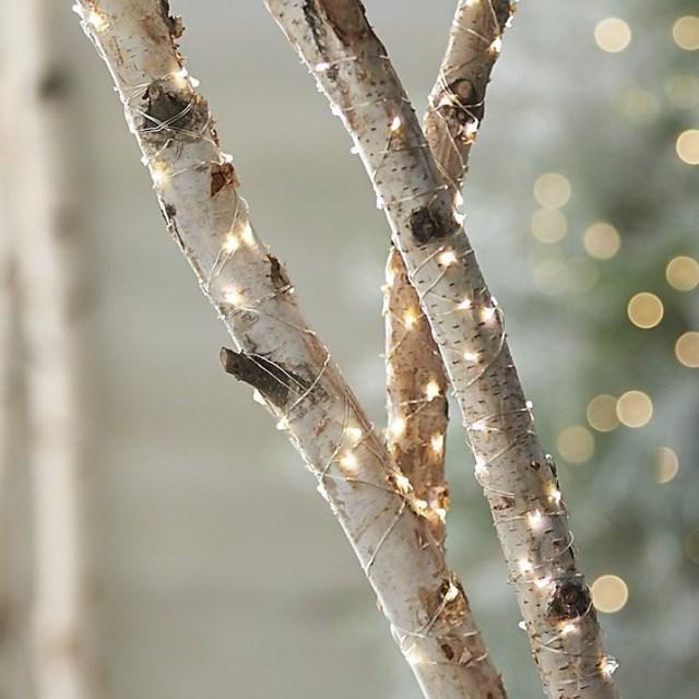 Dùng đèn dây trang trí cho cây trong nhà hay ngoài sân