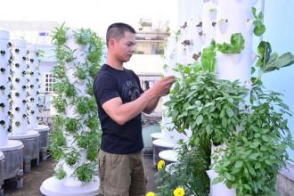 Mỗi loại rau khi trồng bằng hình thức khí canh sẽ phát triển nhanh hơn 30-40% so với các phương pháp canh tác truyền thống