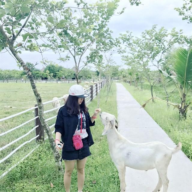 Để đến được nơi này bạn đi theo hướng QL22 đến cầu vượt Củ Chi, chạy qua cầu vượt 2km gặp đường Nguyễn Thị Rành, ghẹo phải đi tiếp khoảng 10km là đến.