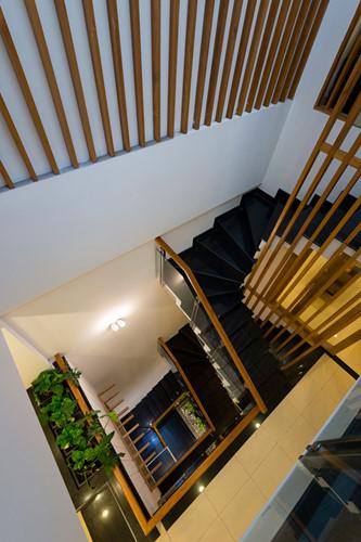 Cầu thang nằm ngay dưới giếng trời, ở vị trí trung tâm của ngôi nhà.