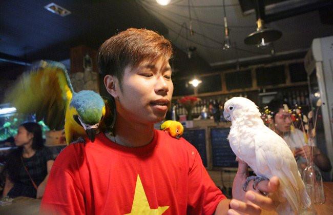 Anh Nguyễn Quang Minh ở Hà Nội, dù mới 26 tuổi nhưng đã sở hữu gần 20 chú vẹt đắt tiền, trong đó cặp đôi vẹt non nhập từ Nam Mỹ có giá trên 5.000 USD (hơn 100 triệu đồng). Ảnh: Dân Việt.