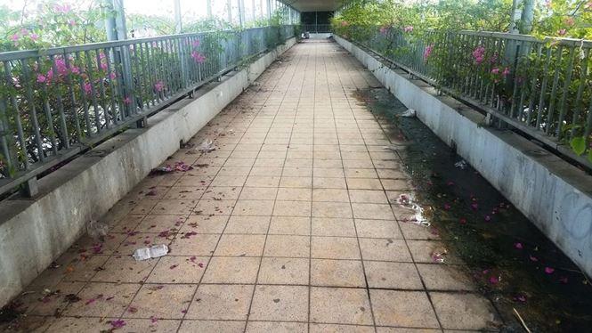 Theo các chuyên gia giao thông, việc những cây cầu bộ hành không phát huy được tác dụng là do việc xây dựng không đúng vị trí, những nơi cần thì chưa có còn nơi có thì không có người dùng.