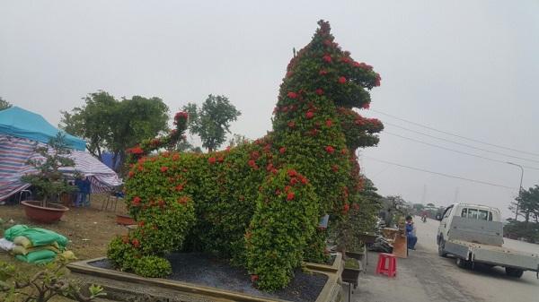 Hình ảnh chú chó được làm từ cây hoa hoa mẫu