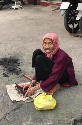 Hình ảnh gầy gò ốm yếu của cụ đang ngồi bên đường để cho đi những chú mèo