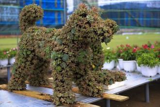 Chú chó được kết từ hoa được các công nhân chuẩn bị tại tỉnh Đồng Tháp cho đường hoa Nguyễn Huệ tết 2018.
