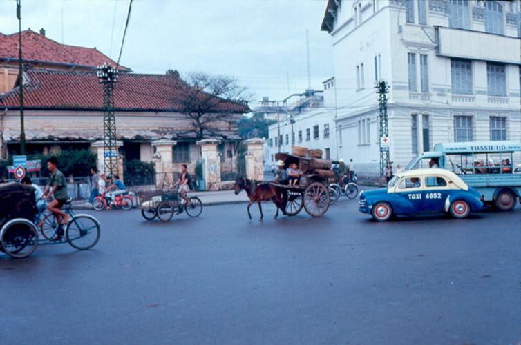 Xe thổ mộ chạy giữa đường phố Sài Gòn cùng các loại xe hơi, 1967. Ảnh tư liệu.