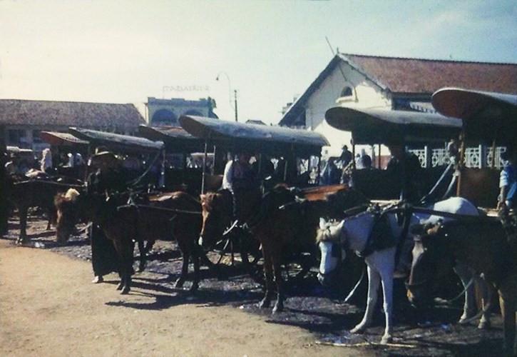 Bến xe thổ mộ cạnh chợ Bến Thành, Sài Gòn năm 1953. Ảnh tư liệu.