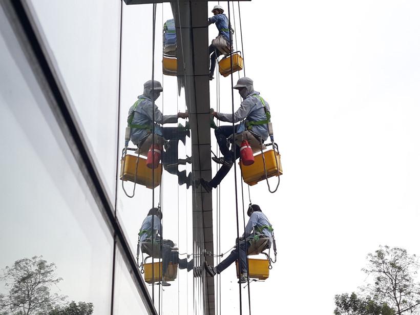 Hiện ở TP.HCM có khoảng 150 thợ đu dây lau kính chuyên nghiệp. Hầu hết những tòa nhà cao tầng ở TP.HCM đều từng được một trong số họ đu dây để làm sạch hệ thống kính