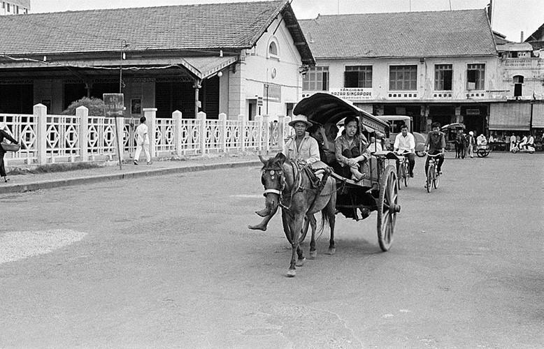 Xe ngựa phía trước ga Sài Gòn cũ, nay là khu vực công viên 23/9, năm 1959. Ảnh: Getty.