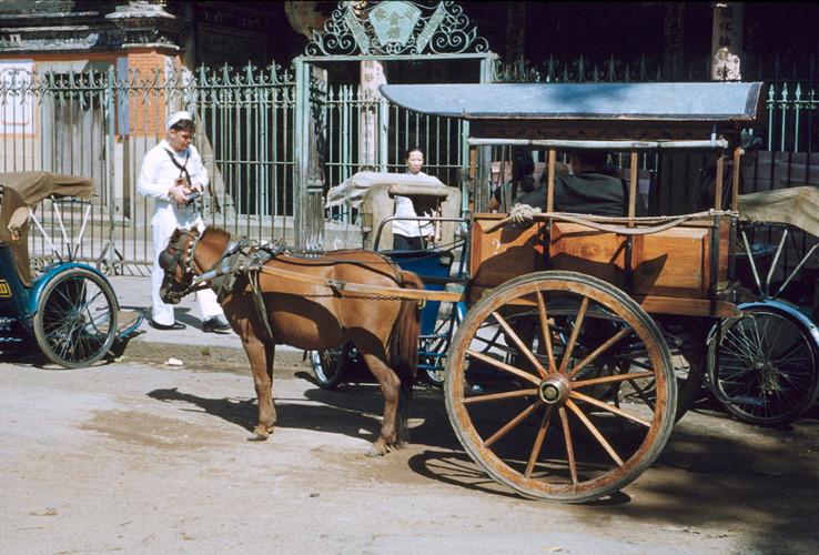 Xe thổ mộ bên ngoài hội quán Ôn Lăng, Sài Gòn năm 1954. Có người cho rằng, gọi như vậy là vì chiếc xe nhìn từ xa trông khum khum như... ngôi mộ. Ảnh tư liệu.