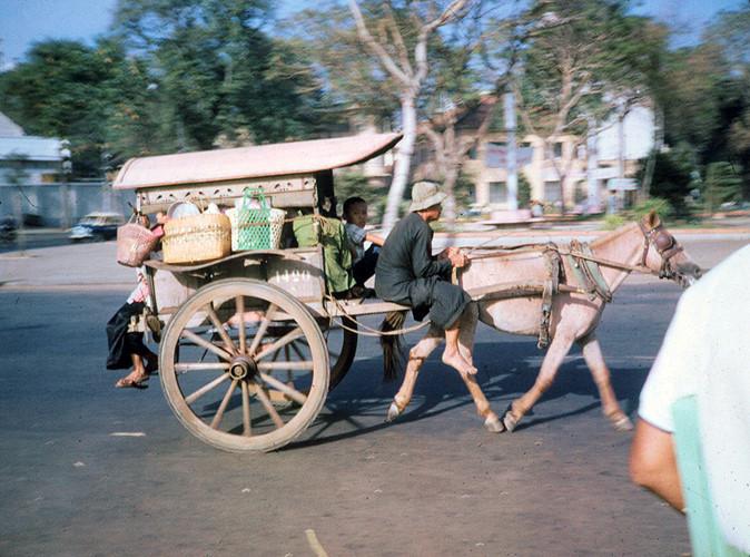Xe thổ mộ trên Công trường Mê Linh, Sài Gòn năm 1965. Cho đến thập niên 1960, xe thổ mộ vẫn được sử dụng ở Sài Gòn, nhưng không còn thịnh hành như trước do sự phố biển của taxi, xe lam, xích lô máy... Ảnh: Bruce Baumler.