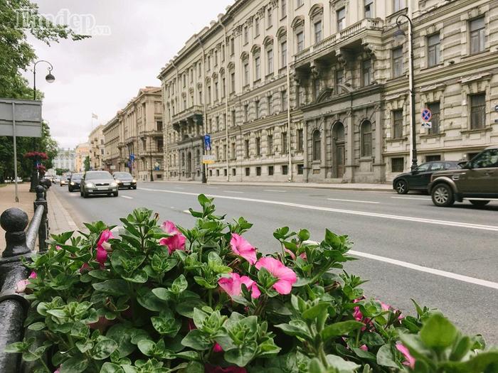 Các đường phố đều trong lành và hoa cỏ thi nhau đua nở.