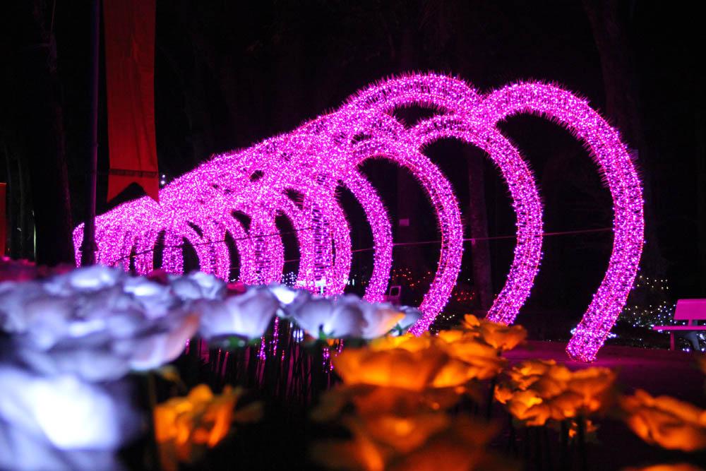 Cũng trong dịp Tết này, Thảo Cầm Viên Sài Gòn tổ chức Lễ hội đèn Led với hàng triệu bóng đèn tạo hình các địa danh nổi tiếng thế giới, đèn ba chiều công nghệ cao, các loại đèn tạo hình động vật