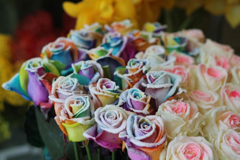 Hoa 7 màu phủ tuyết độc đáo, hiếm gặp cũng có giá 250.000đ/bông.