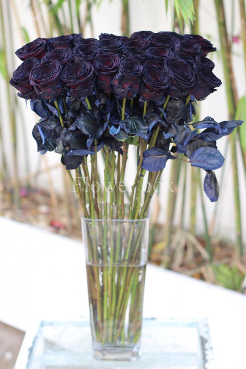 Đặc biệt hoa hồng đen được nhập từ Hà Lan đang hot trở lại trong mùa Valentine năm nay, hiện hoa đang cháy hàng và được bán với giá 200.000đ/cành.