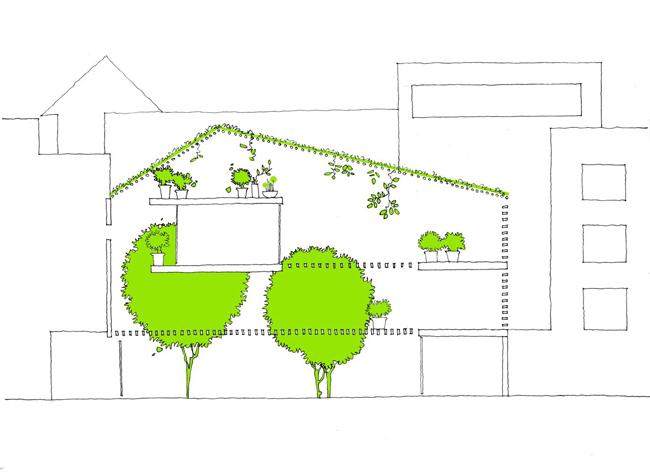 Bản vẽ minh họa mặt cắt dọc mặt hông ngôi nhà