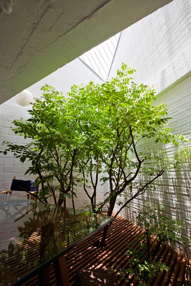 """Gia chủ, đồng thời là kiến trúc sư chính của công trình chia sẻ: """"Tôi muốn căn phòng làm việc của mình giống một chiếc lồng hoang được tắm dưới ánh nắng mặt trời, ngập trong mưa và bao quanh bởi cây cối""""."""