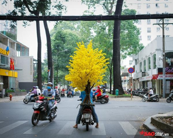 Sài Gòn hôm 30 Tết: Là chậu mai vàng sau chiếc xe dream, anh công nhân chở thuê đi muôn ngã Sài Gòn.