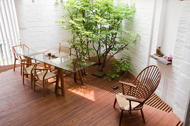 Để hiện thực hóa điều này với quỹ đất ít ỏi, chủ nhà đã mang một vườn cây nhỏ vào trong nhà, đặt nó ở trung tâm, ngay dưới giếng trời.