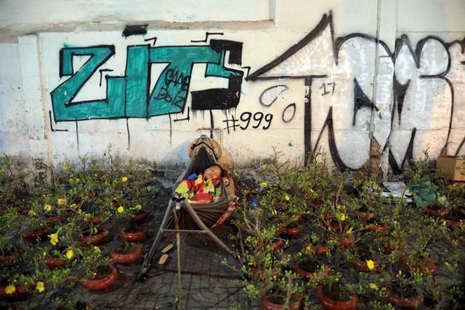 Một chị bán hoa kiểng tết co ro trên võng giữa trời đêm lạnh để canh hoa ẢNH: ĐỨC ANH