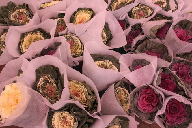 """Thay vì tặng nhau những bó hồng và chocolate theo cách """"truyền thống"""", rất nhiều cặp đôi lựa chọn hoa hồng sa mạc hay còn gọi là hoa bắp cải cho ngày lễ ngọt ngào này ẢNH: LT"""