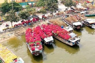 Hoa từ các tỉnh miền Tây đã cập Bến Bình Đông (quận 8) phục vụ thị trường tết TPHCM Ảnh: THANH HẢI