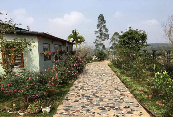 Biệt thự vườn 1 tầng của gia đình chị Hằng (Phú Thọ) tràn ngập hoa hồng đẹp như cổ tích. Ảnh: Kientrucavas.