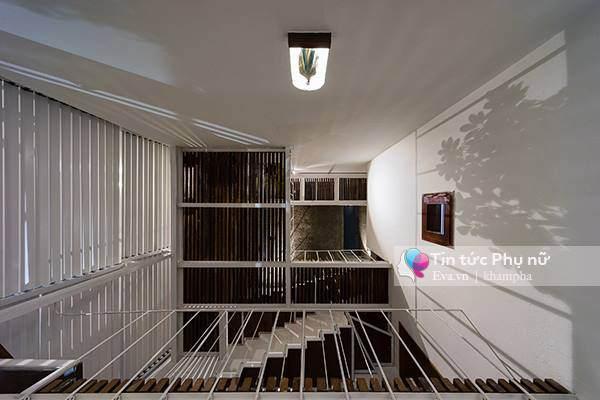 Mặt đứng khung thép thay cho những bức tường gạch tạo sự khác biệt và tạo không gian thoáng đãng