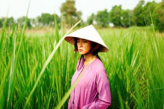 Hai Phuong 1