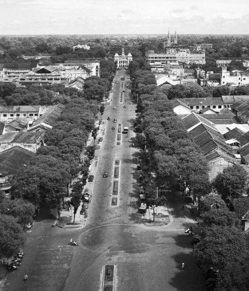 Ngày nay ở Sài Gòn nhiều con đường vẫn còn giữ được những hàng cây đó, chẳng hạn như Nguyễn Du, Lê Thánh Tôn, Sương Nguyệt Ánh, Ngô Gia Tự, Huyền Trân Công Chúa…