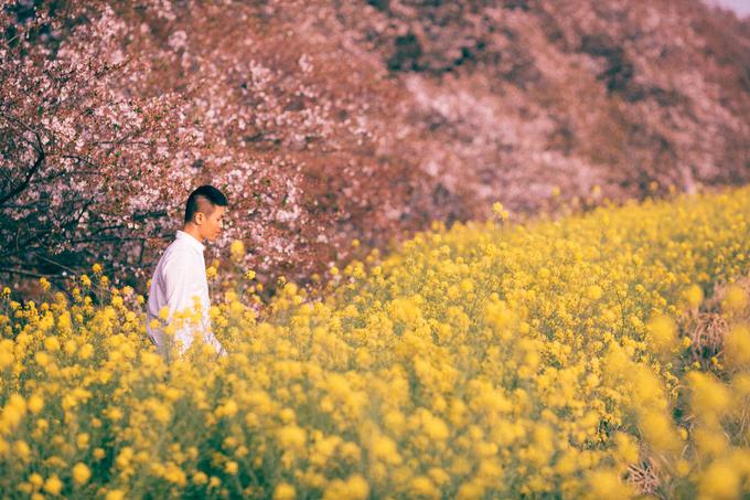 Công viên Arakawa cách trung tâm thành phố khoảng 100 km (đi tàu điện hết 1,5h) nên không quá đông khách du lịch, chủ yếu là người Nhật đi ngắm hoa nên khung cảnh rất thanh tao và yên tĩnh. Ở đây có một bờ đê dài khoảng 2km với hàng trăm cây hoa anh đào cổ thụ. Ngay bên dưới hàng đào là một cánh đồng hoa cải vàng ngợp trời. Màu vàng của hoa cải phối với màu hồng pastel của hoa đào, trên nền trời xanh rất hấp dẫn.