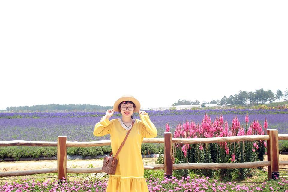 Hiện tại cánh đồng hoa lavender này chỉ mở cửa đón khách từ thứ 5 tới chủ nhật. Tuy nhiên vào các ngày khác bạn vẫn có thể chụp ảnh ở phía ngoài và vẫn thấy được khung cảnh những luống hoa tím ngắt chạy dài đẹp như đang ở nước Pháp.
